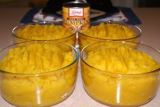 Roasted Pumpkin Puree #8 (Finished)