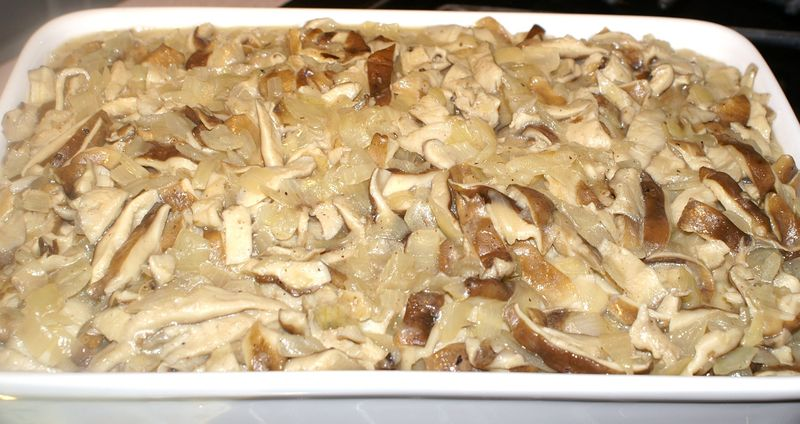 Shiitake Mushrooms #9 (Mushrooms in Casserole)