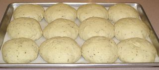 Crusty Caraway Seed Sandwich Rolls #13 (On Pan and Risen)
