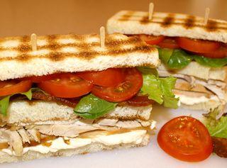 Turkey Sandwich #2-a (The Evan Royster)