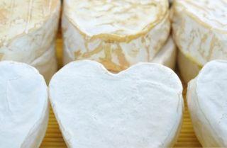 Neufch-atel-cheese