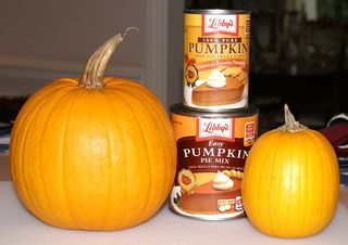 Roasted Pumpkin Puree #1 (Pumpkins with Cans)