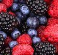 Berries_1435584879-300x200