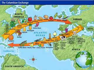 Columbian-Exchange1